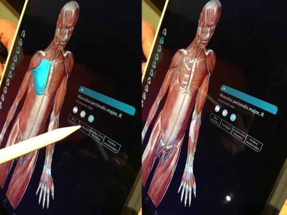 iPad Pro + Pencil by Simons Photography - Medizin nebeneinander